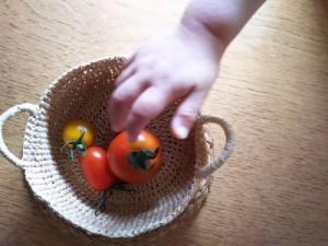 テルの手とトマト_400