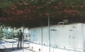 野澤さんとトマトの樹