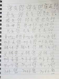 DSC_0732 (3-2)