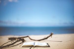 beach-1866992__340