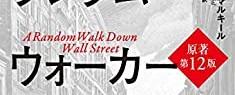 ウォール街のランダム・ウォーカー 株式投資の不滅の真理