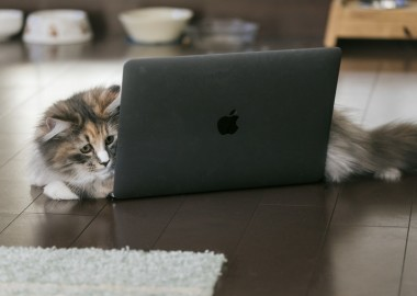 Mac買ったらまずは揃えたいおすすめアイテム7選